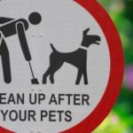 Pomysły na psie kupy
