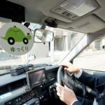 Żółwiowe taksówki